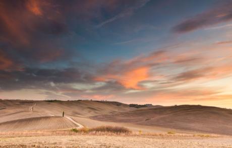 Cipressen fotoreis Toscane