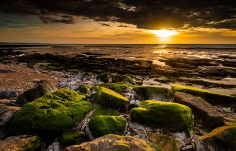 Fotoreis Opaalkust seascapes