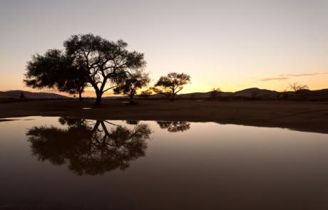 Namibie landschapsfotografie woestijn