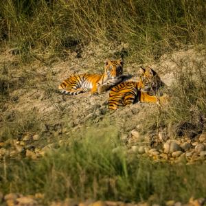 Fotoreis Bardia Wildlife Nepal